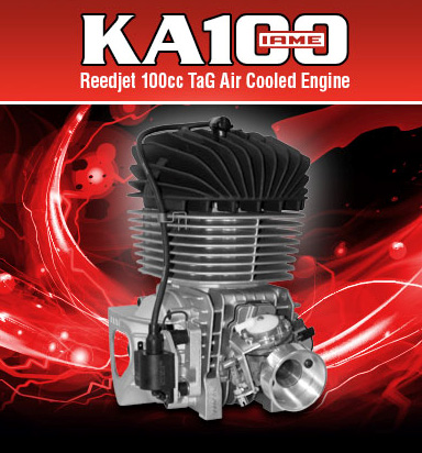 IAME KA 100 engine